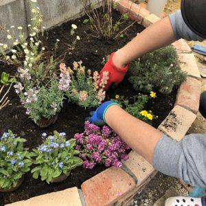 花壇を作る(4)